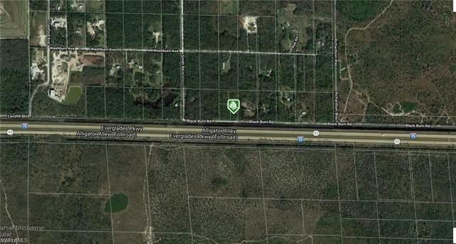 Black Burn Rd, Naples, FL 34117 (MLS #221000397) :: Clausen Properties, Inc.