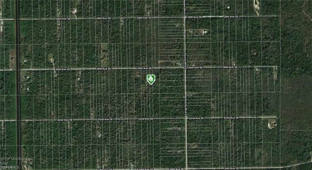 30th Ave SE, Naples, FL 34120 (#221007877) :: Southwest Florida R.E. Group Inc