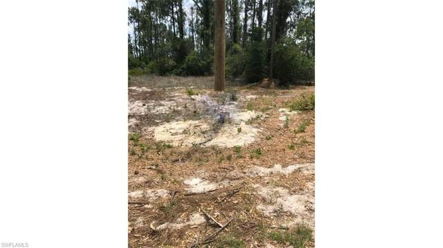 7716 19th Ter, Labelle, FL 33935 (#221010161) :: Earls / Lappin Team at John R. Wood Properties