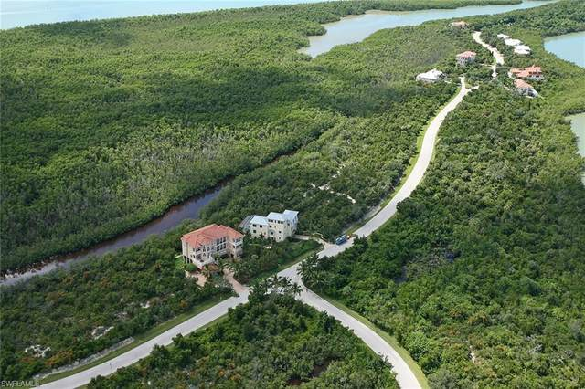 1066 Blue Hill Creek Dr, Marco Island, FL 34145 (MLS #221011141) :: Domain Realty