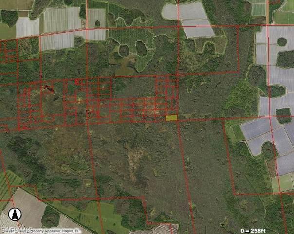 Address Not Published, Immokalee, FL 34142 (MLS #221012174) :: Dalton Wade Real Estate Group