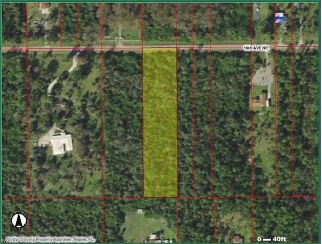 16th Ave NE, Naples, FL 34120 (MLS #221014474) :: Domain Realty