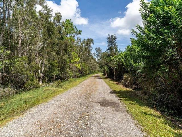 7321 Carousel Ln, Fort Myers, FL 33966 (MLS #221015224) :: Waterfront Realty Group, INC.