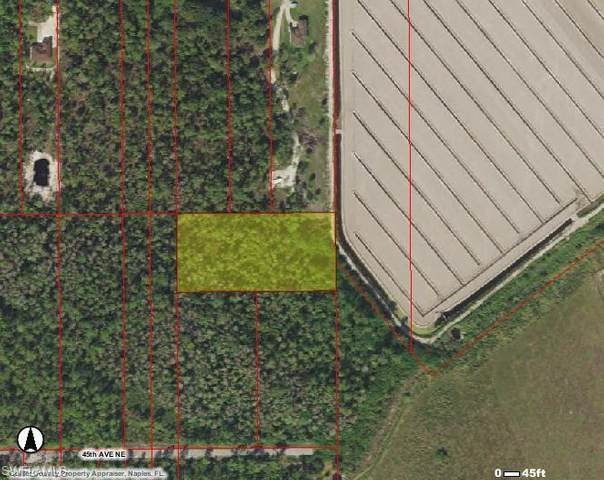 45th Ave NE, Naples, FL 34120 (MLS #221015263) :: Domain Realty