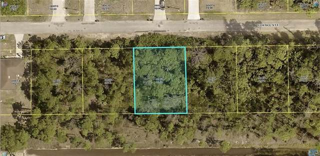 714 Foxtail St E, Lehigh Acres, FL 33974 (MLS #221017308) :: Premiere Plus Realty Co.
