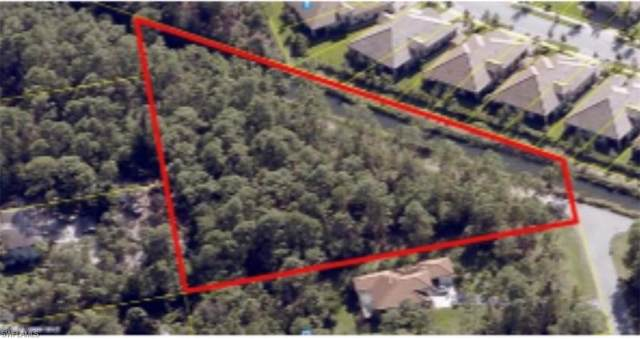 25357 Moriah Ln, Bonita Springs, FL 34135 (MLS #221020104) :: Domain Realty