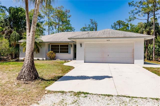 6075 Dogwood Way, Naples, FL 34116 (MLS #221022136) :: Realty World J. Pavich Real Estate