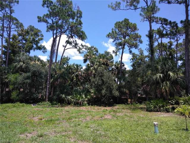 27173 Serrano Way, Bonita Springs, FL 34135 (MLS #221027443) :: Domain Realty