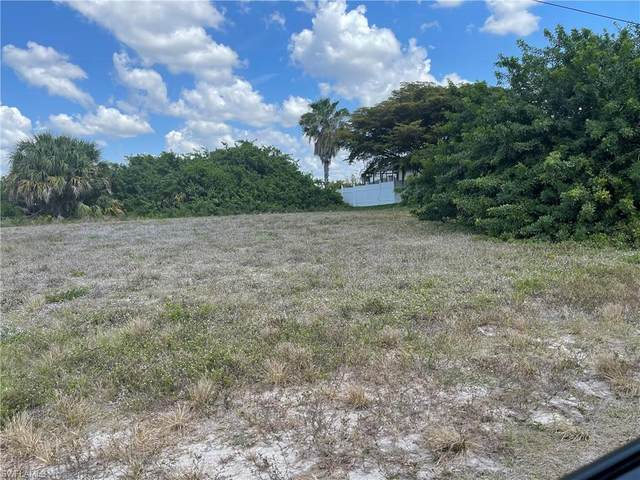 1511 NW 8th Ter, Cape Coral, FL 33993 (MLS #221034485) :: Domain Realty