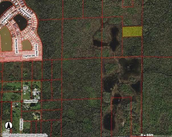 Acreage, Naples, FL 34114 (MLS #221038181) :: Clausen Properties, Inc.