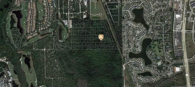 Rio Vista St, Estero, FL 33928 (MLS #221040668) :: Florida Homestar Team
