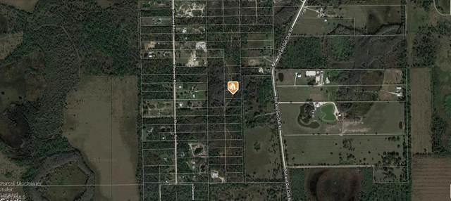 Vista Ridge Dr, Fort Myers, FL 33913 (MLS #221040743) :: Team Swanbeck
