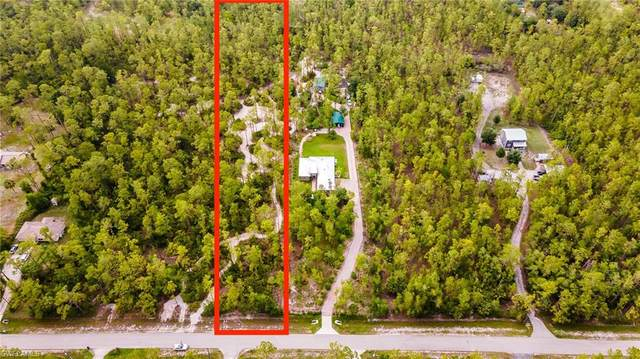 XXXX 2nd Ave SE, Naples, FL 34117 (MLS #221044649) :: RE/MAX Realty Group