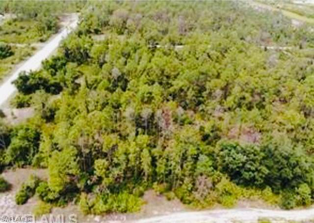 7654 18TH Pl, Labelle, FL 33935 (MLS #221044988) :: Wentworth Realty Group