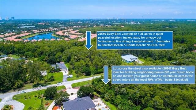 25546 Busy Bee Dr, Bonita Springs, FL 34135 (#221049355) :: Southwest Florida R.E. Group Inc