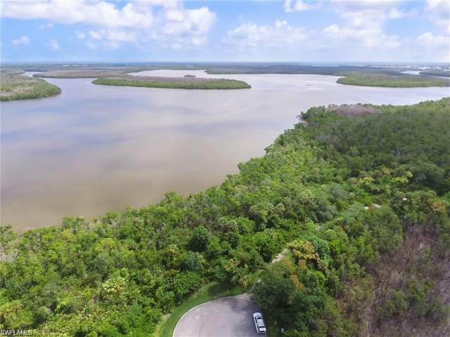 1005 Blue Hill Creek Dr, Marco Island, FL 34145 (#221050820) :: Southwest Florida R.E. Group Inc