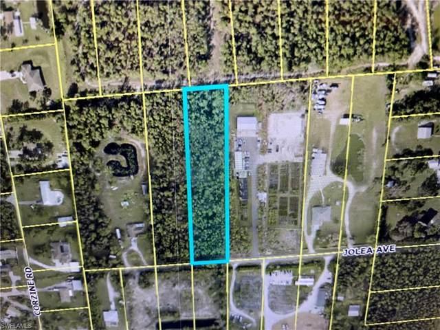10574 Jolea Ave, Bonita Springs, FL 34135 (MLS #221053234) :: Crimaldi and Associates, LLC