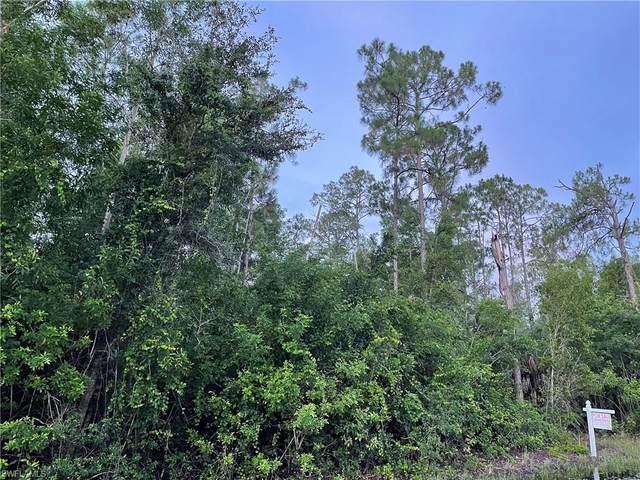 Sandalwood Ln, Naples, FL 34109 (MLS #221053637) :: Avantgarde