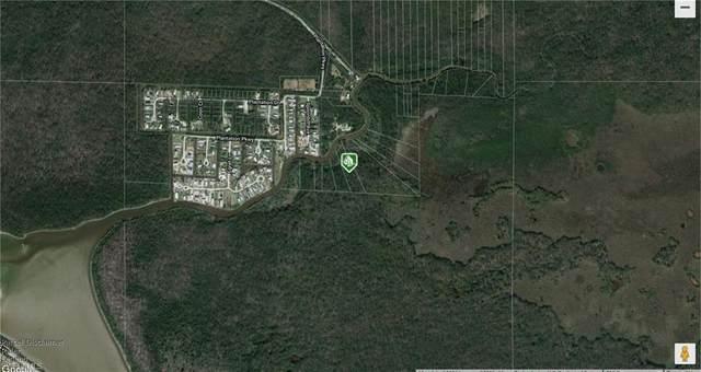 Spoonbill Ave, Everglades City, FL 34141 (MLS #221057396) :: Team Swanbeck