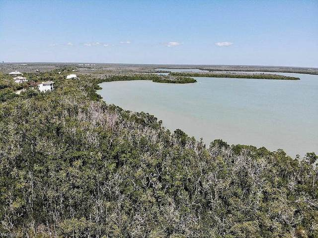 1059 Blue Hill Creek Dr, Marco Island, FL 34145 (#221059218) :: Equity Realty