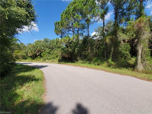 Hillman Ter, North Port, FL 34288 (MLS #221063903) :: Team Swanbeck