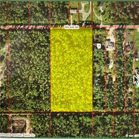 4130 10th Ave NE, Naples, FL 34120 (MLS #221068329) :: Realty World J. Pavich Real Estate