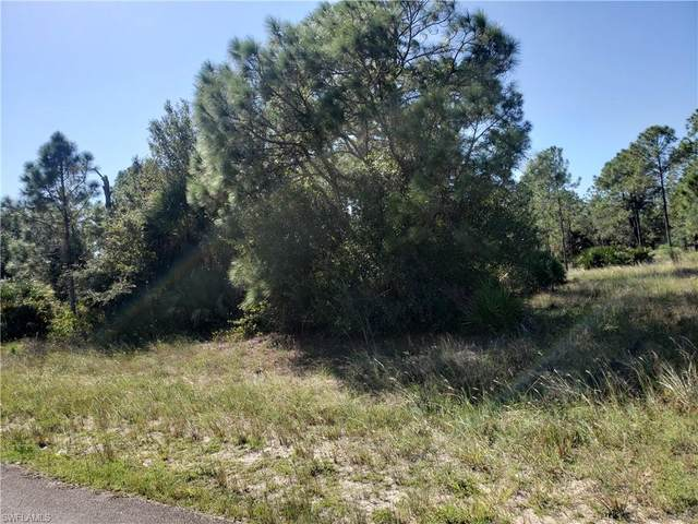 1317 Hamilton Ave, Lehigh Acres, FL 33972 (MLS #221071264) :: Clausen Properties, Inc.