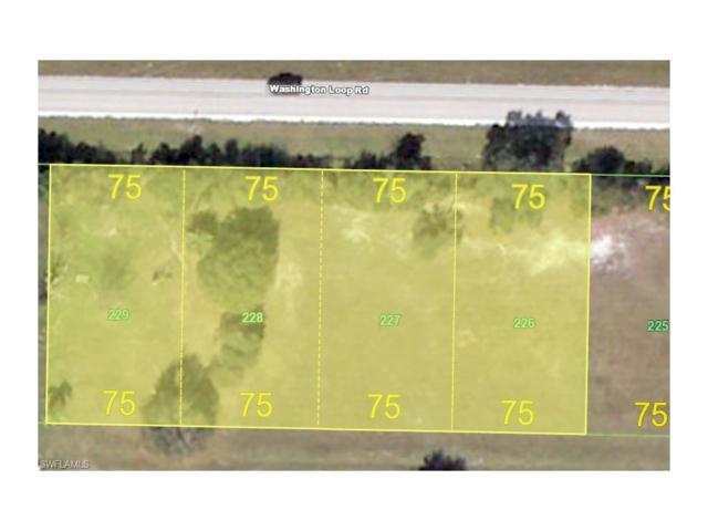 30056 Beech Rd, Punta Gorda, FL 33982 (#216055940) :: Homes and Land Brokers, Inc