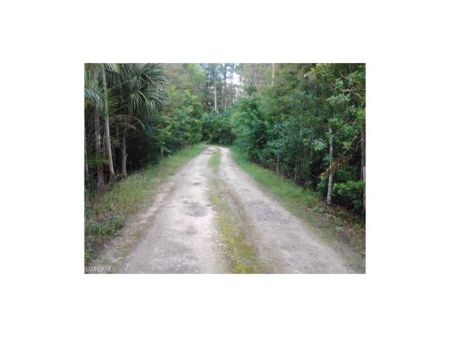 15291 S Mallard Ln, Fort Myers, FL 33913 (MLS #216060152) :: The New Home Spot, Inc.