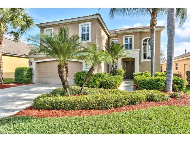 20190 Rookery Dr, Estero, FL 33928 (MLS #217001184) :: The New Home Spot, Inc.