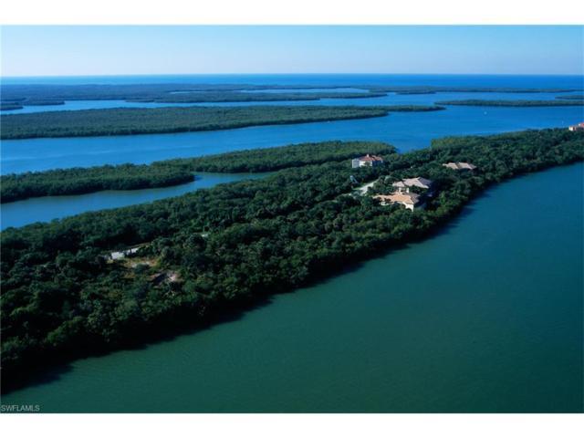 1211 Blue Hill Creek Dr, Marco Island, FL 34145 (MLS #217024691) :: The New Home Spot, Inc.