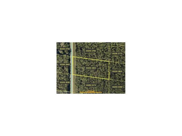 24299 Roger Dodger St, Bonita Springs, FL 34135 (#217046235) :: Equity Realty