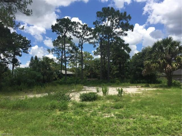 12019 River View Dr, Bonita Springs, FL 34135 (MLS #217048392) :: The New Home Spot, Inc.