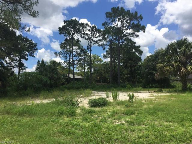 12023 River View Dr, Bonita Springs, FL 34135 (MLS #217048398) :: The New Home Spot, Inc.