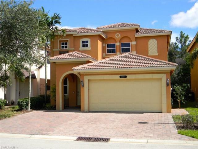 10217 Southsilver Palm Dr, Estero, FL 33928 (MLS #217048574) :: The New Home Spot, Inc.