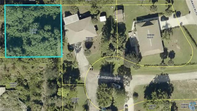 23436 Coconut Rum Ct, Bonita Springs, FL 34134 (MLS #217075477) :: The New Home Spot, Inc.