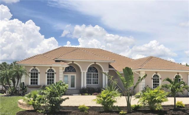 19411 Lauzon Ave, Port Charlotte, FL 33948 (MLS #218029155) :: Clausen Properties, Inc.
