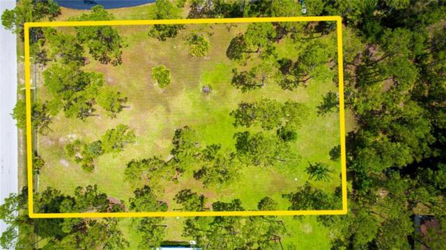 24344 Dietz Dr, Bonita Springs, FL 34135 (MLS #218044479) :: The New Home Spot, Inc.