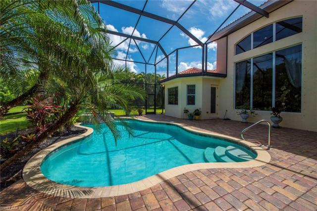 19384 La Serena Dr, Estero, FL 33967 (MLS #218046111) :: RE/MAX DREAM