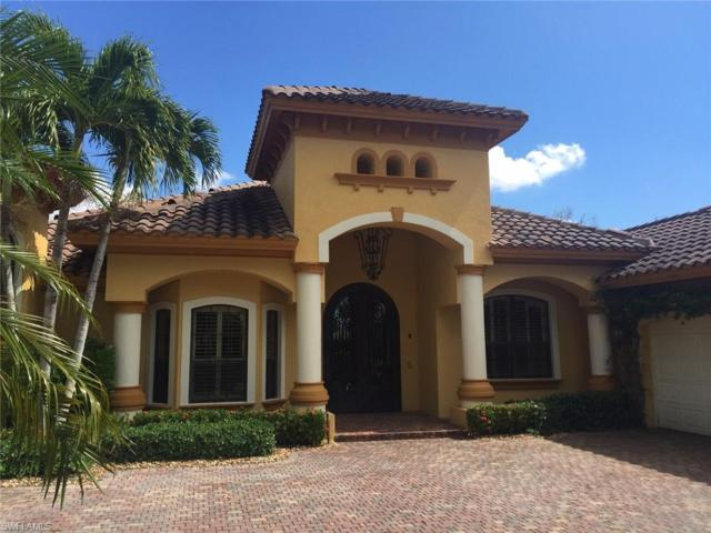 28535 Raffini Ln, Bonita Springs, FL 34135 (#219016548) :: Equity Realty