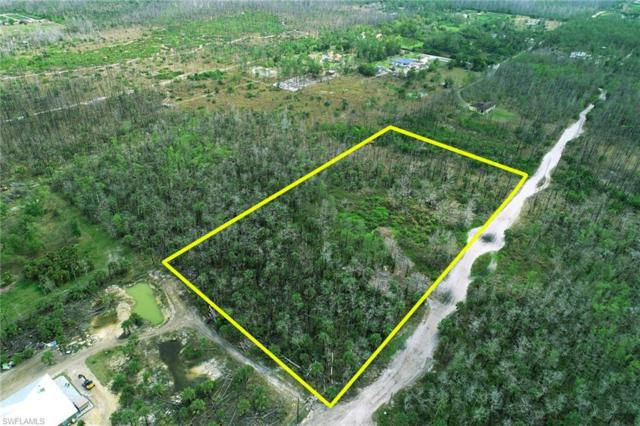 2840 Smith Rd, Naples, FL 34117 (MLS #219017614) :: RE/MAX Realty Group