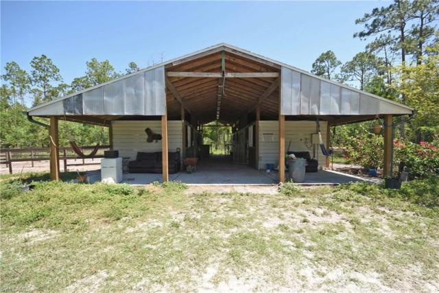 1850 Washburn Ave, Naples, FL 34117 (MLS #219035345) :: Clausen Properties, Inc.