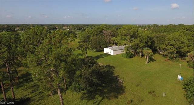300 Homestead Rd S, Lehigh Acres, FL 33936 (MLS #220024187) :: Palm Paradise Real Estate