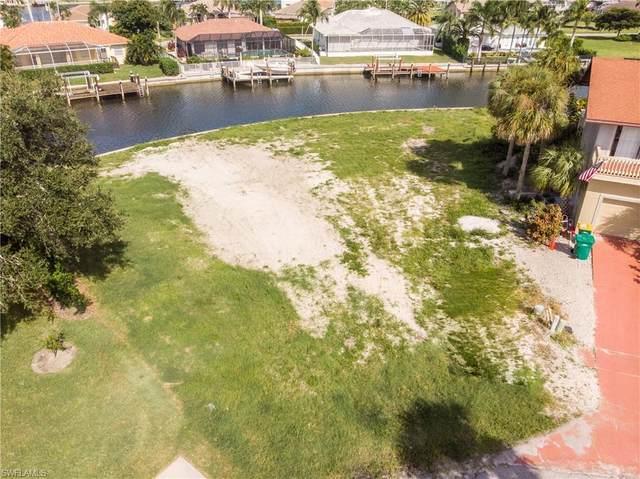 317 Waterleaf Ct, Marco Island, FL 34145 (MLS #220060529) :: RE/MAX Realty Group