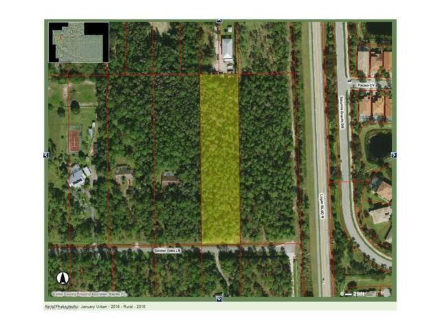 Golden Oaks Ln, Naples, FL 34119 (MLS #216067146) :: The New Home Spot, Inc.