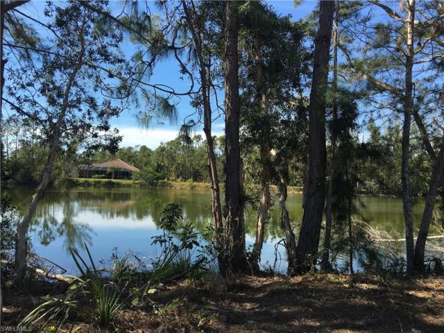 24476 Golden Eagle Ln, Bonita Springs, FL 34135 (#217008385) :: Equity Realty