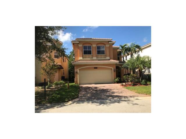 10225 South Silver Palm Dr, Estero, FL 33928 (MLS #217033940) :: The New Home Spot, Inc.