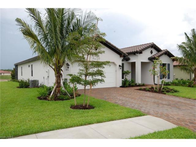 4356 Raffia Palm Cir, Naples, FL 34119 (MLS #217035715) :: Clausen Properties, Inc.