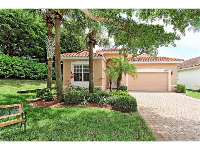 20005 Alana Ct, Estero, FL 33928 (MLS #217040529) :: The New Home Spot, Inc.