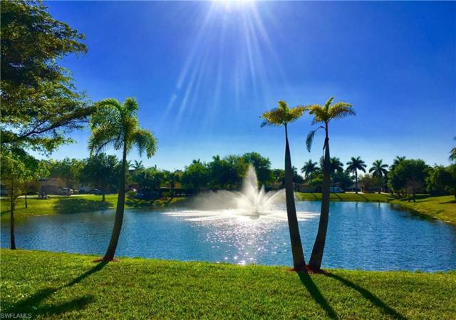 20620 Golden Elm Dr, Estero, FL 33928 (MLS #219005544) :: The Naples Beach And Homes Team/MVP Realty